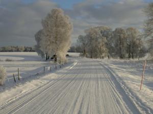 Gotland Viklau Wintertime Netclassics
